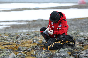 Survival Artists in the Antarctic