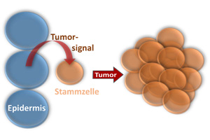 Tumor induction from a distance