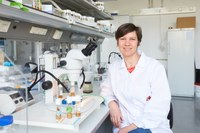 Heisenberg funding for Anne-Kathrin Classen
