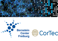 Two first prize winners of the Bernstein-CorTec Award