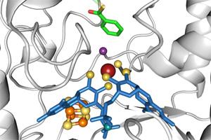 Enzym knackt stabile aromatische Verbindungen