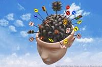 Brain Networks under Attack