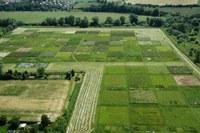 Artenverlust zerstört Ökosysteme