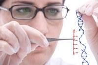 Subcontracting Genetic Scissors