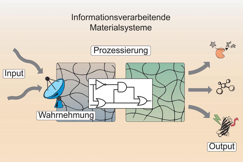 Biologische Signalprozesse in intelligenten Materialien
