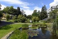 A green oasis celebrates its birthday
